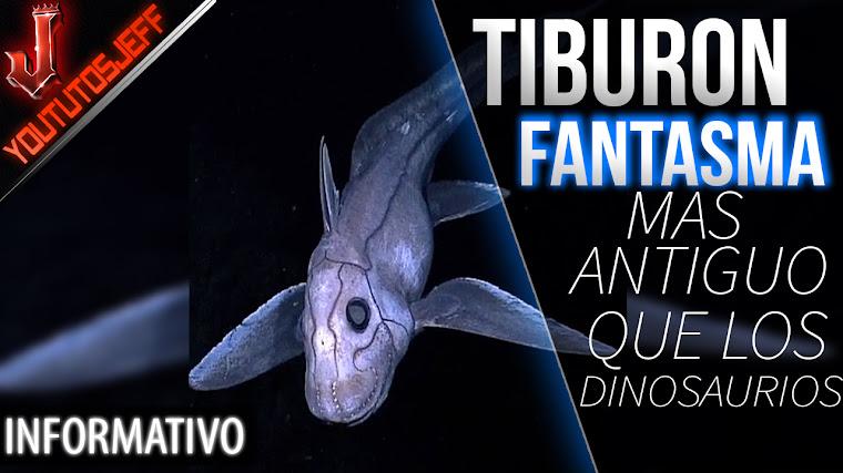 El Tiburon fantasma una criatura más antigua que los dinosaurios