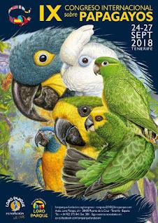 IX Congreso Internacional de Papagayos