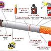 14 Ancaman Merokok Bagi Kesehatan Badan Yang Mengerikan