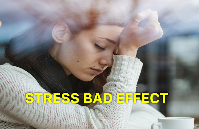 Dangerous Effect Of Stress: How Badly Stress Harms Your Healthy Body And Mind
