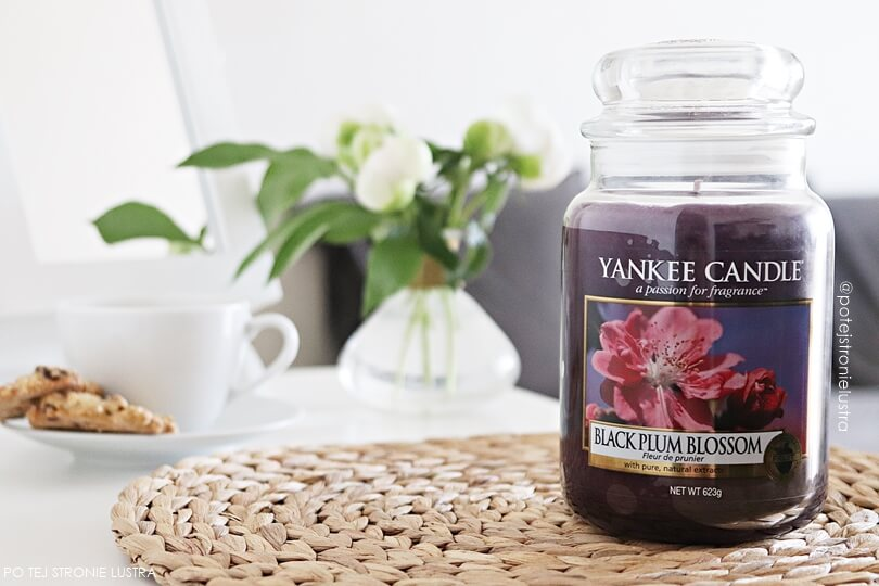 yankee candle black plum blossom blog