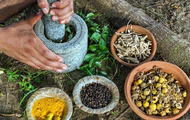 Ayurvedikus táplálkozás - gyógynövények