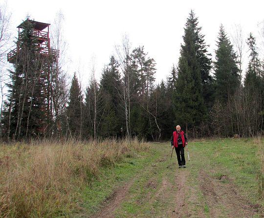 Wieża widokowa na Królewskiej Górze.