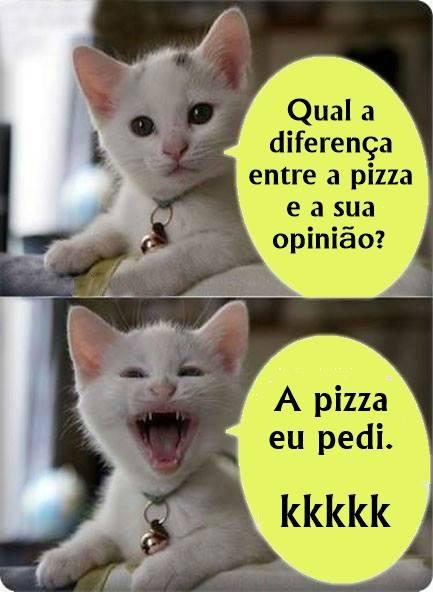 gatinho-do-face-pizza-opiniao, frases engraçadas