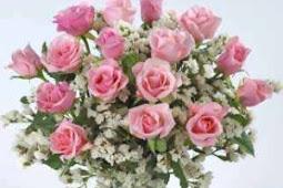 Berbagai Macam Kegunaan Bunga Rosella untuk Kesehatan