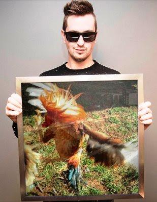 cuadro gallo de pelea