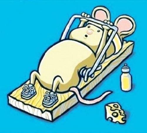 humor grafico raton ejercicios