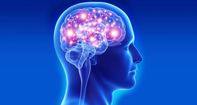beyin-bilinmeyenleri-ile-şaşırtıyor