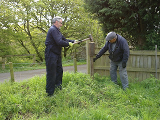 Bill and Malcolm planting a speed limit sign at Causey