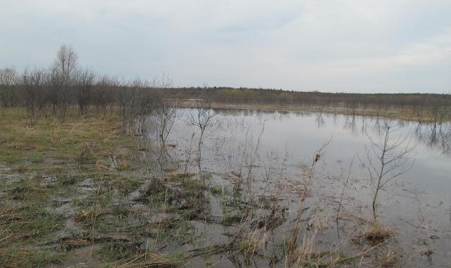 место рыбалки весной