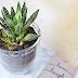 DIY: Sklenený črepník s dekoračným názvom