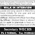 Wapda Employees Cooperative Housing Society Ltd. Lahore Jobs