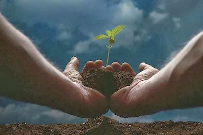 Pengertian Lingkungan; Lingkungan Hidup dan Upaya Pelestarian