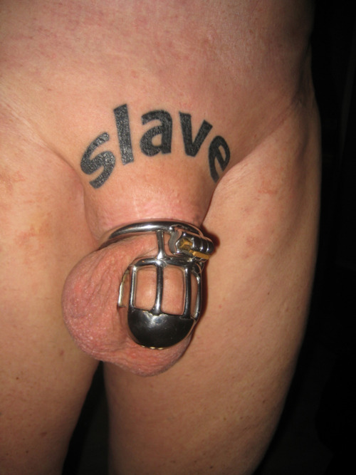 image Bdsm xxx caged sub signs his body mind into his mistresses