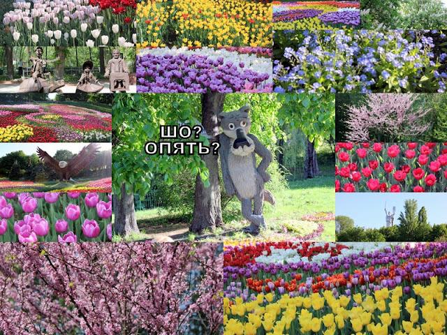 Киев цветущий