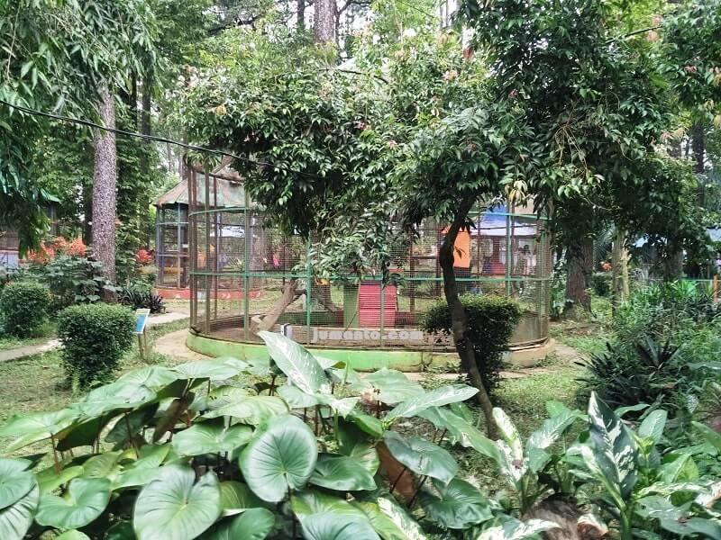 taman burung punti kayu palembang
