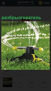 С помощью разбрызгивателя водой поливают весь зеленый газон