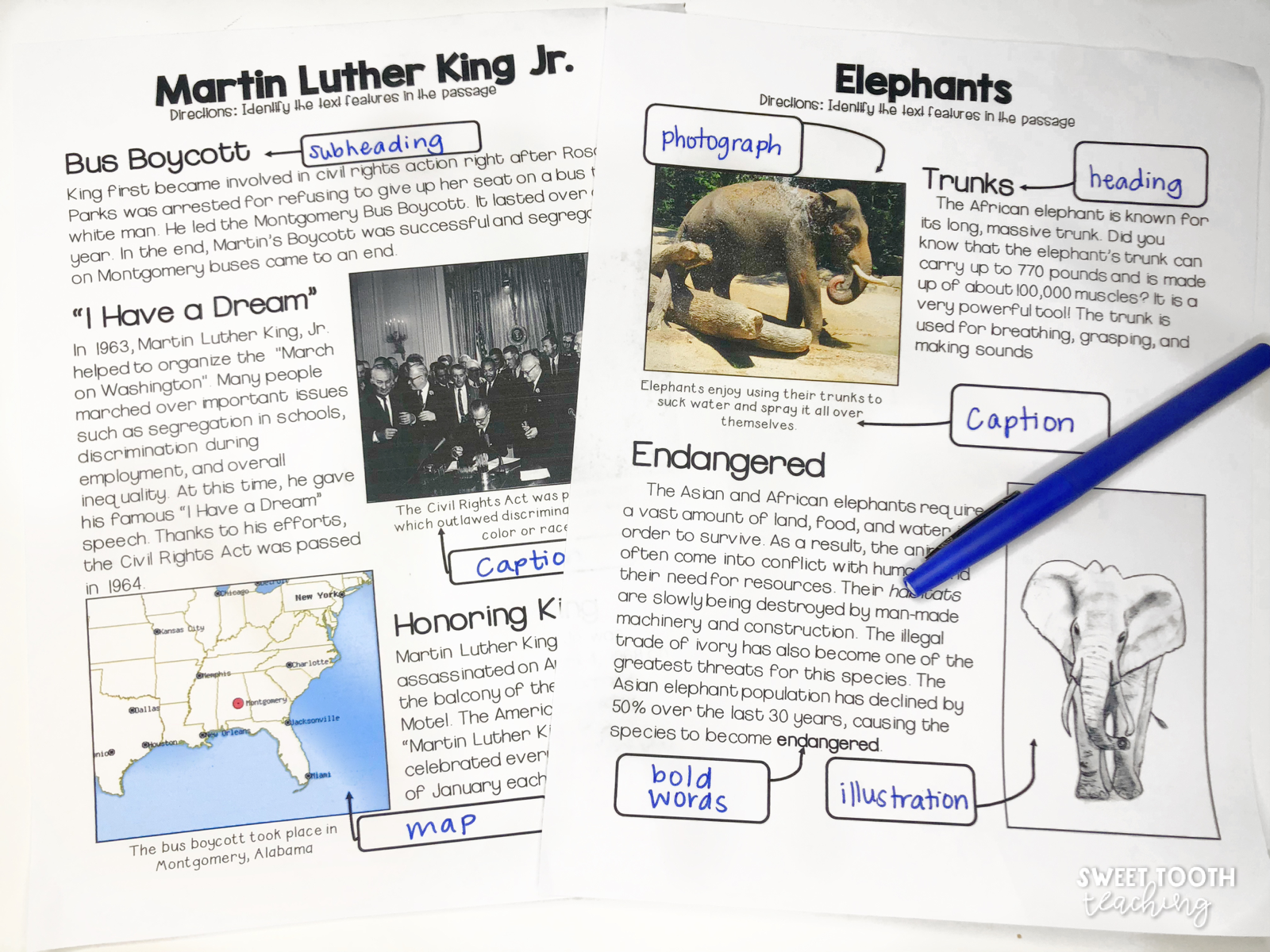 hight resolution of Text Feature Surgery- A Classroom Transformation - Sweet Tooth Teaching