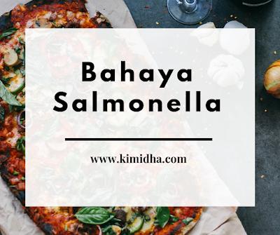 Bakteri salmonella, bakteri salmonella, gejala typus, jenis jenis bakteri, penyakit typus,pencegahannya typus, kontaminasi typus, ciri ciri gejala typus, bakteri berbahaya,