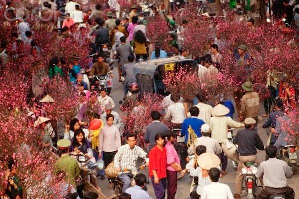 Vietnamese New Year 9