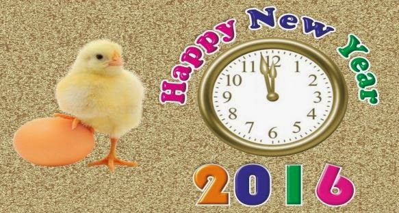 Happy New Year 2016 Quotes SMS
