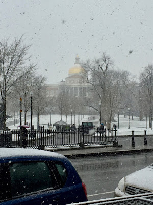 The State House viewed across Boston Common