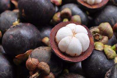 buah manggis manggu