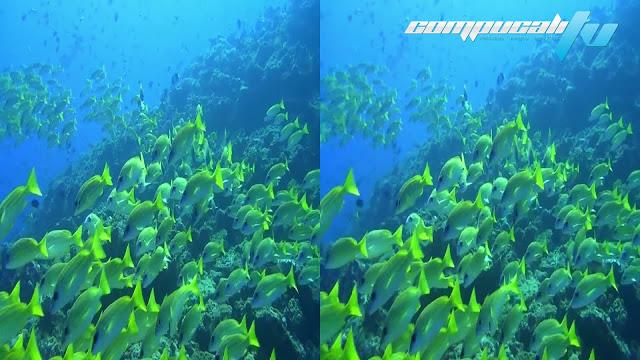Amazing Ocean 3D SBS 1080p