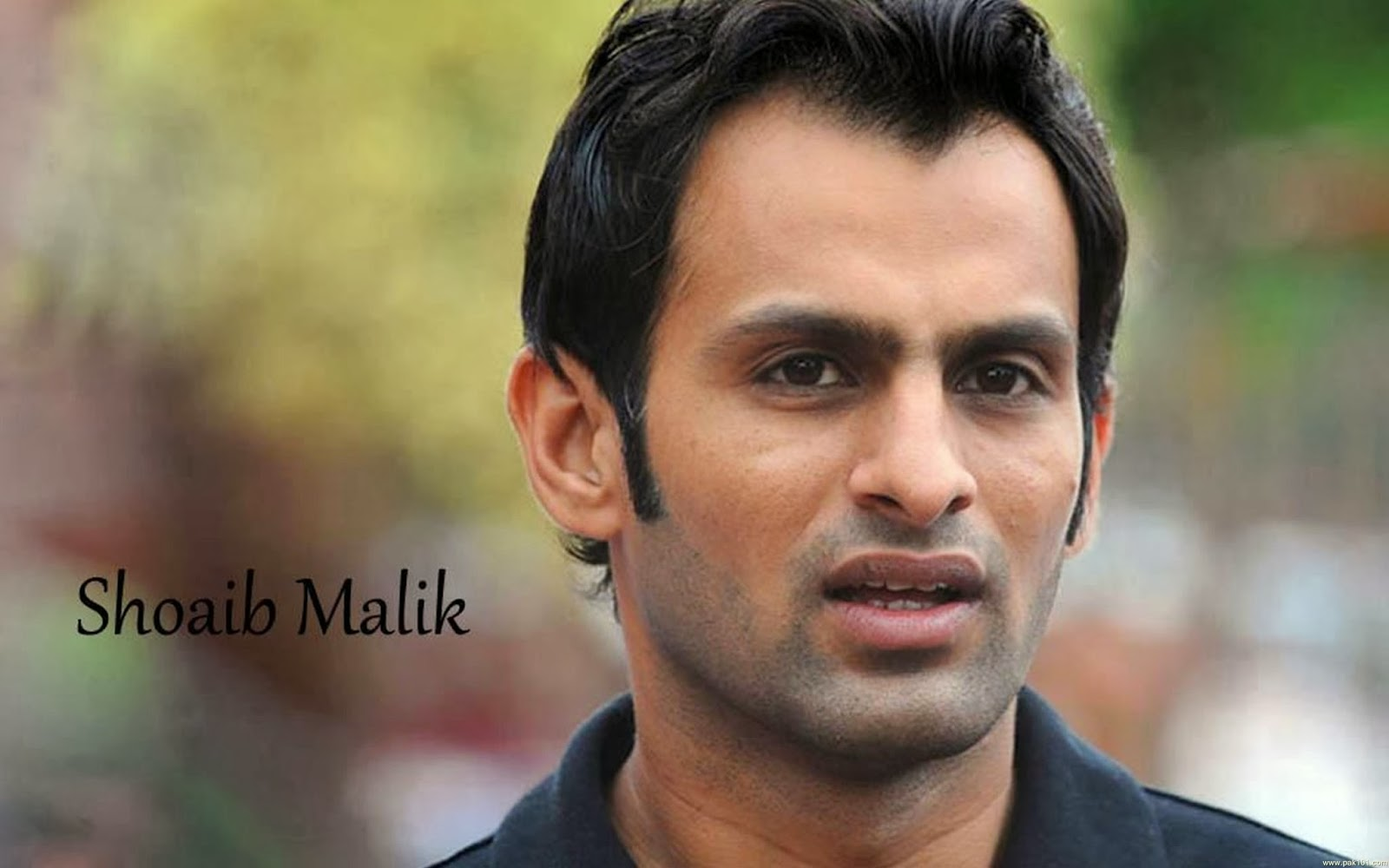 Words Celebrities Wallpapers: Shoaib Malik Brand New HD