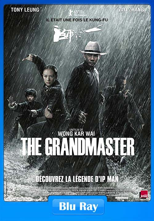 The Grandmaster 2013 720p BluRay Dual Audio x264 | 480p 300MB | 100MB HEVC