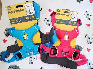 ruffwear frontrange dog harness pink and blue
