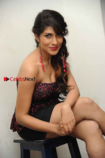 Kannada Actress Iti Acharya Stills in Strapless Dress at Dhwani Movie Press Meet  0009.jpg