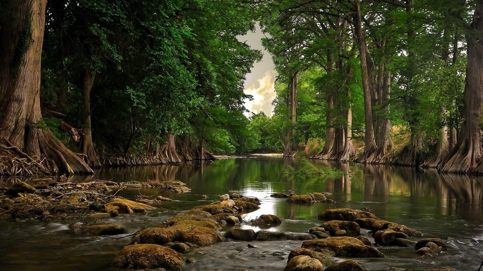 River  Mystery Wallpaper