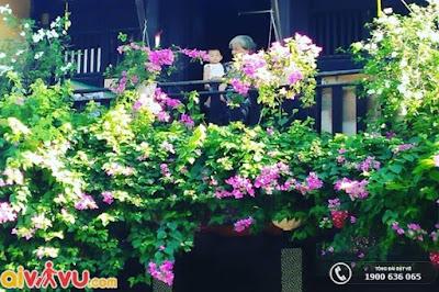 [Hình: nhung-quan-cafe-dep-o-hoi-an-6.jpg]