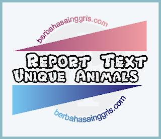 9 Contoh Report Text tentang Hewan Unik dalam Bahasa Inggris dan Terjemahannya