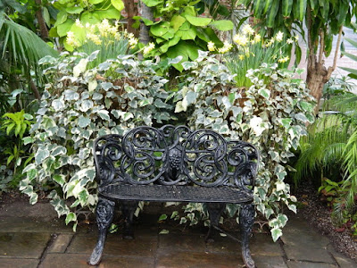 Spring containers and wrought iron bench at the Allan Gardens Conservatory 2018 Spring Flower Show by garden muses-not another Toronto gardening blog