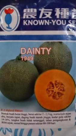 Melon Dainty murah, perawatan mudah, rasa manis, daging keras, kulit bernet, dainty, Melon Dainty, Melon Orange, Melon Daging Merah, Melon Known You Seed, Benih, Bibit, Melon Merah, Melon Orange