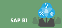 SAP BI Online Training
