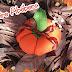 Alfineteiro Abóbora / Pumpkin Pincushion
