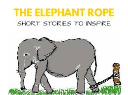 the elephant  story for school competition