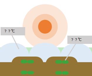 天候による農作物への温度的影響シミュレーション