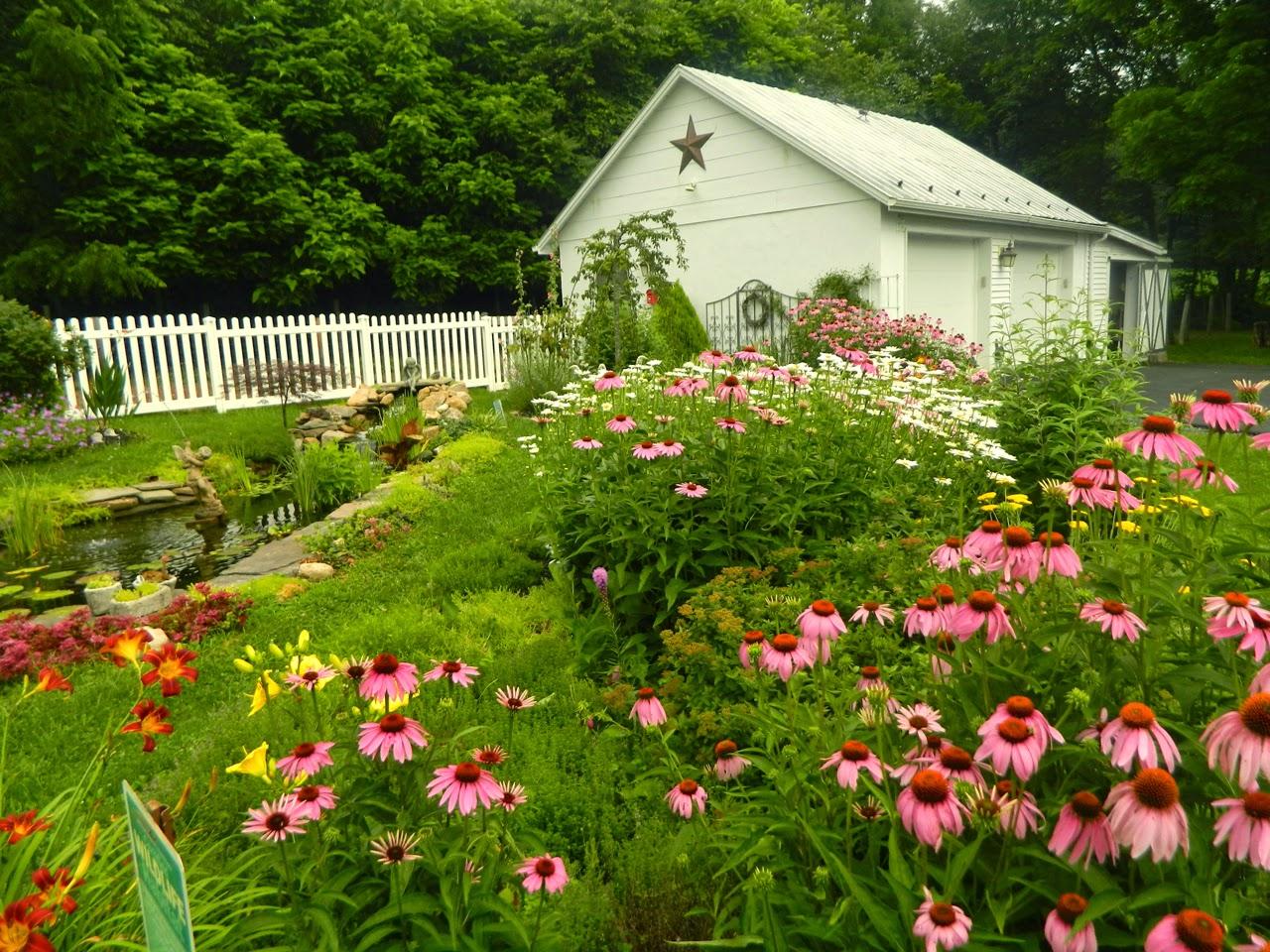 Pams English Cottage Garden