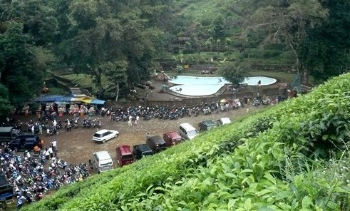 Pesona Keindahan Wisata Kebun Teh Jamus Ngawi Ihategreenjello