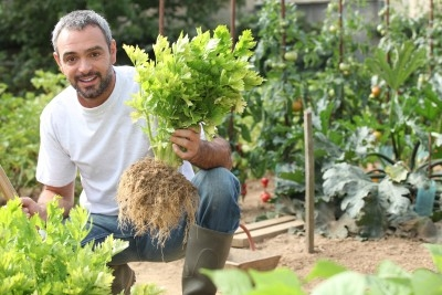 Elegant Want To Learn How To Make Your Organic Garden Grow Faster And Bigger ? Design