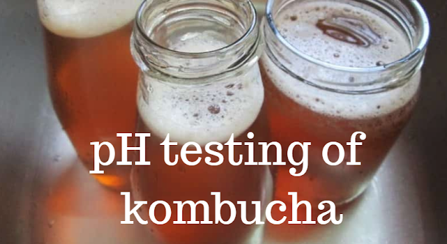 ph levels of kombucha