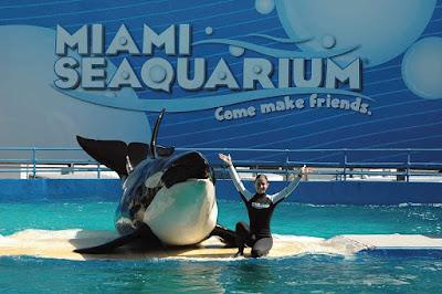 Miami-Seaquarium