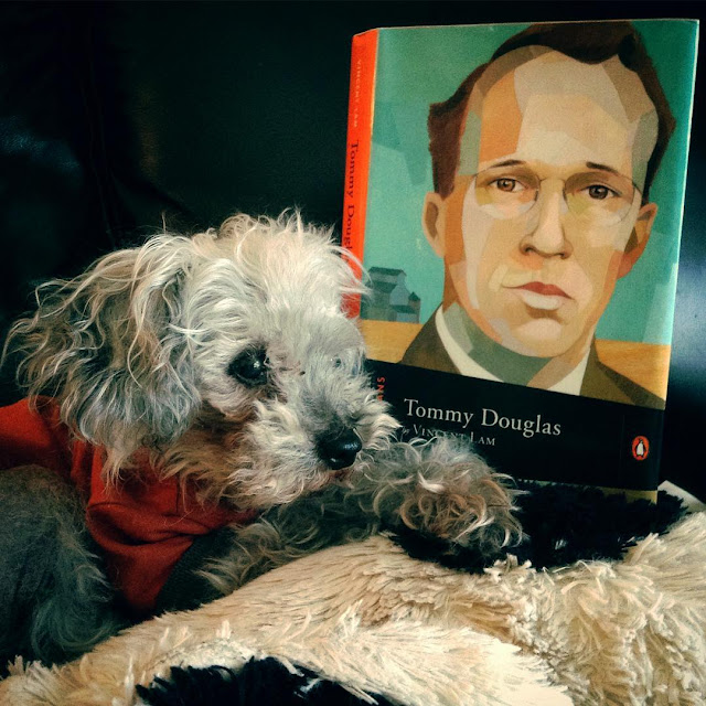 Murchie lies on a cow-shaped pillow. He wears an orange t-shirt and has his head raised and one paw extends before him. Propped upright behind him is a hardcover copy of Tommy Douglas. Its cover features a slightly abstracted drawing of a brown-haired white man wearing glasses.