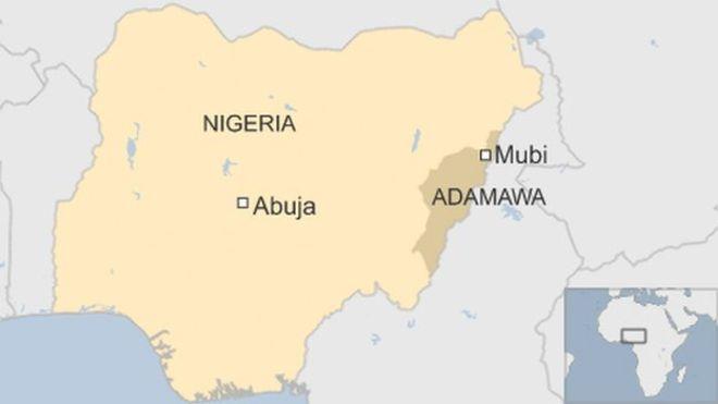 Nigeria suicide bombing kills 50 in Adamawa state