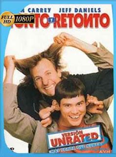 Tonto y Retonto 1994 HD [1080p] Latino [GoogleDrive] DizonHD
