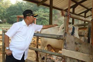Penjabat Wali Kota Cirebon, Dr. H. Dedi Taufik M. Si